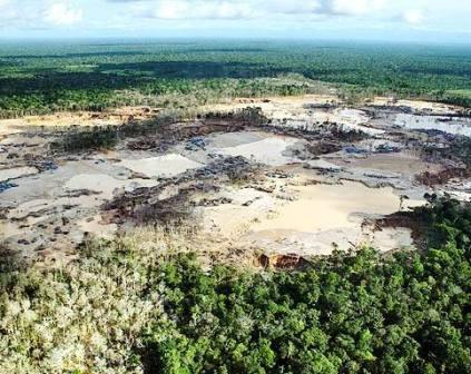 Minería ilegal en Perú mueve más de US$ 900 millones sin pagar impuestos, ni regalías