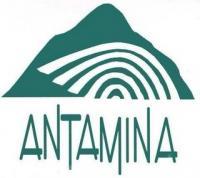 Antamina_logo