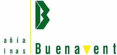 Minas-Buenaventura