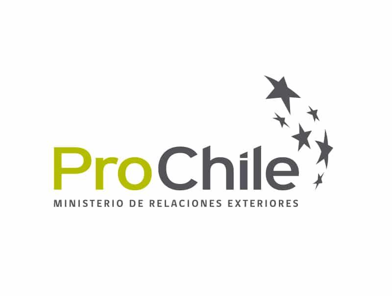 """ProChile: """"Queremos que Perú y Chile se transformen en un hub de minería"""""""